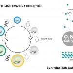Arquitectura bioclimática_1